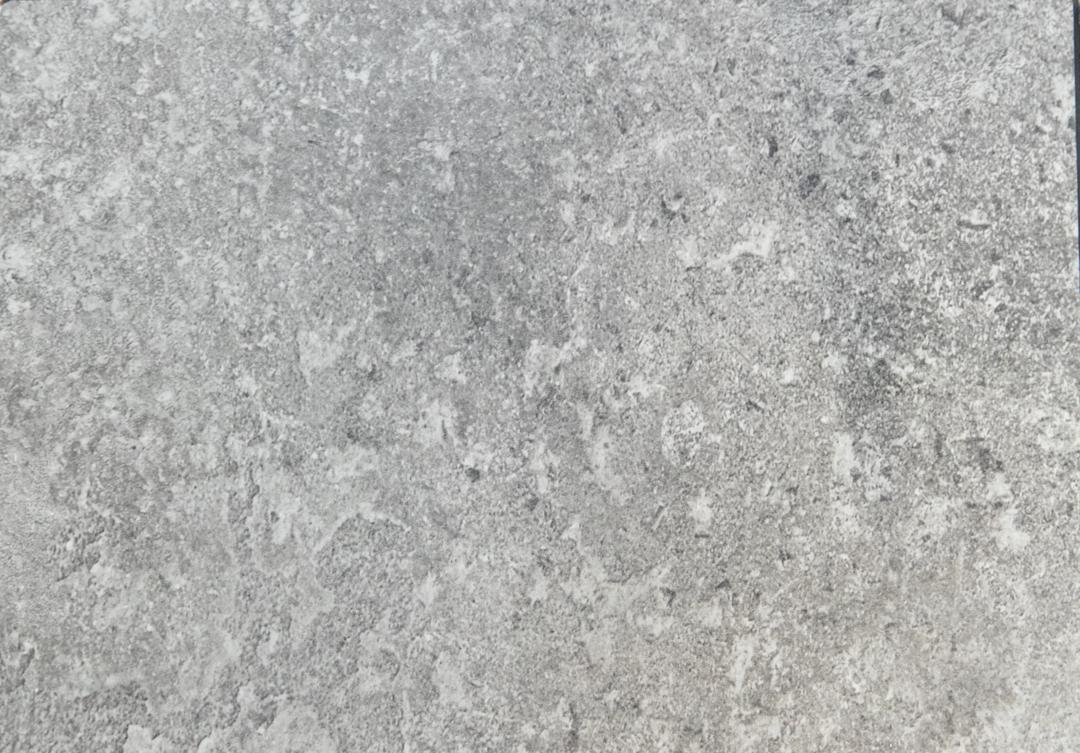 S60019GR